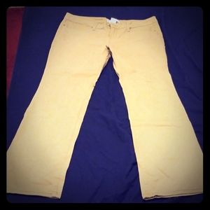 No boundaries khaki colored jeans